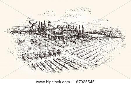 Landscape. Farm, agriculture or vineyards sketch Vector illustration