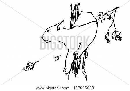 Cat gets out of tree hollow. Sketch style. Vector image.