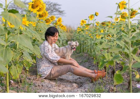 Asia Women And Dog Travel At Sunflower Meadow