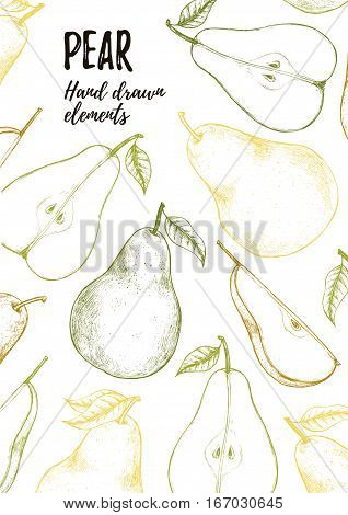 Hand Drawn Vector Illustrations - Promotional Brochure With Sliced Pear, Pears And Leaves. Organic S