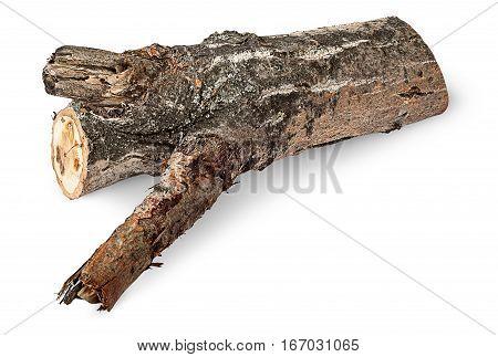 Single poplar log horizontally isolated on white background