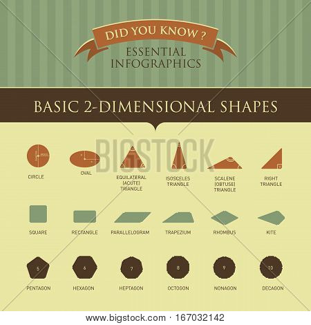 Vector Infographic - Basic 2-Dimensional Shapes Illustration