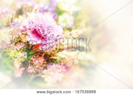 decorative floral graphic with carnation flower and copy space. gift card motive