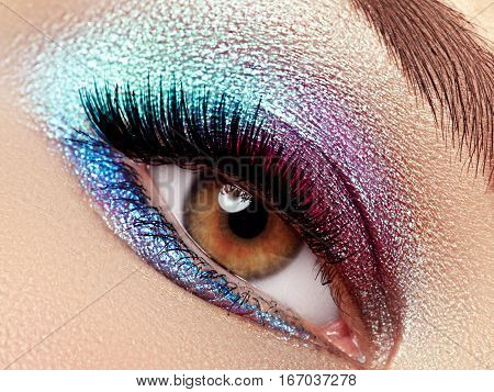 Beautiful Macro Shot Of Female Eye With Extreme Long Eyelashes