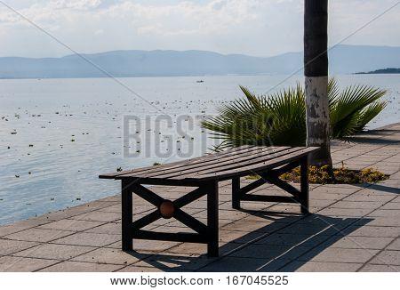 An inviting bench at the lake shore