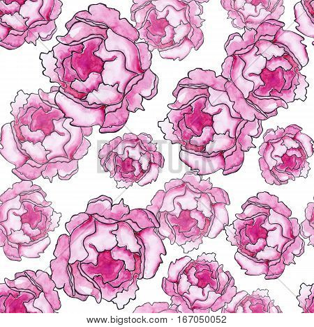 Watercolor crimson peony ink line art sketch seamless pattern texture