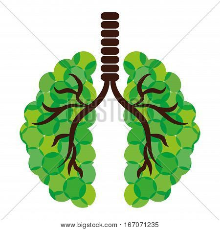 Green lungs of branches icon image, vector illustration