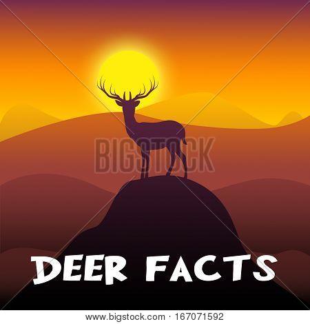 Deer Facts Shows Stag Information 3D Illustration