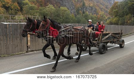 Rachitele,Romania - October 11,2009:Two horses pulling a wagon with happy teenagers in Rachitele, Apuseni Mountains,Transylvania,Romania on October 11,2009.Wagons on Romanian roads are a kind of landmark.