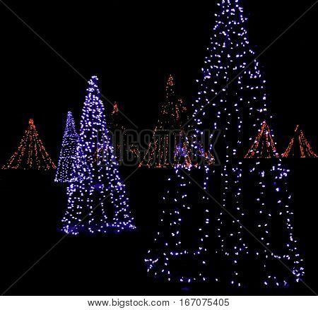 Square view of whimsical artistic Christmas trees made up of strings of blue and red lights glowing brightly in a small park late at night in Niagar Falls, Ontario, on a dark late November evening.