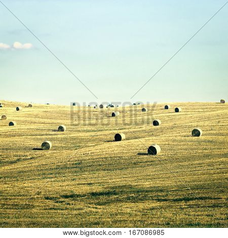 Tuscany Landscape with Many Hay Bales Vintage Style Toned Picture