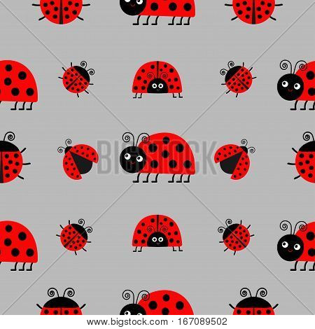 Ladybug Ladybird icon set. Baby collection. Funny insect. Seamless Pattern Wrapping paper textile template. Gray background. Flat design. Vector illustration.