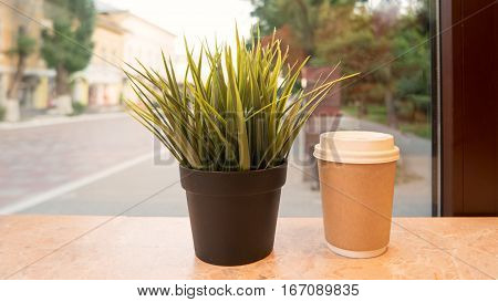 Takeaway cup of hot drink and pot with grass on windowsill, retro color