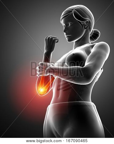 3d Illustration of Women Feeling the Wrist Pain