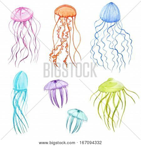 Beautiful hand drawn watercolor illustration of underwater jellyfishes