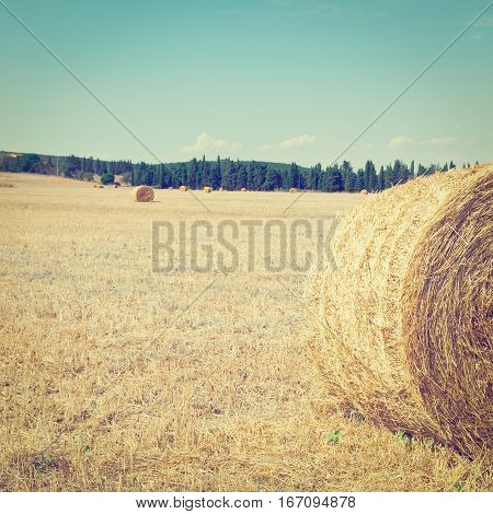 Tuscany Landscape with Many Hay Bales in Italy Instagram Effect