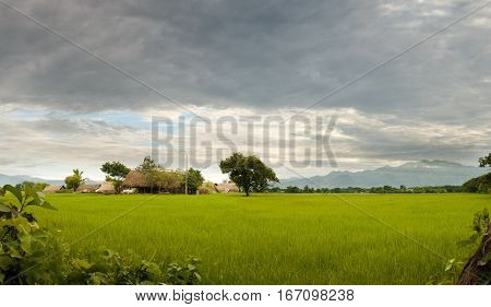 RURAL COUNTRYSIDE SCENE AND FARMHOUSE IN CLOUDY DAY