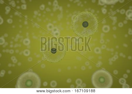 Cells Dividing By Osmosis