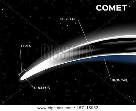 white comet anatomy vector on black background