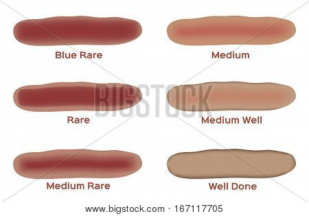 type of meat vector . steak doneness