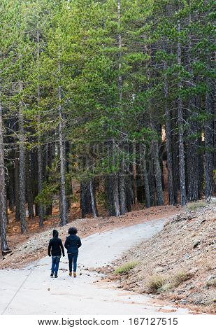 Unrecognized people walking in the forest of Troodos mountains in Cyprus