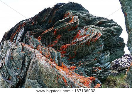 Red Lichen on volcanic rocks high in the Swiss Alps.