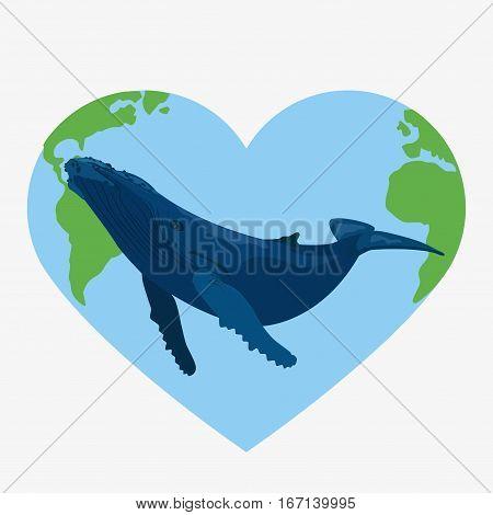 Blue Whale Illustration