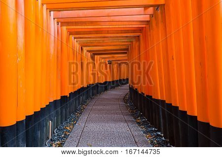 Tori gate at Fushimi-inari temple Zen Gate to the Japanese Temple Kyoto Japan