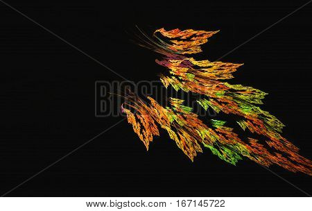 an abstract and colorul feather of Sunbird