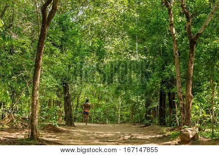 Vedda man walking in jungle. Veddas are an indigenous people of Sri Lanka living in tribes in the jungle