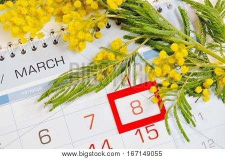 8 March postcard - mimosa flowers over the calendar with framed 8 March date.8 March festive postcard