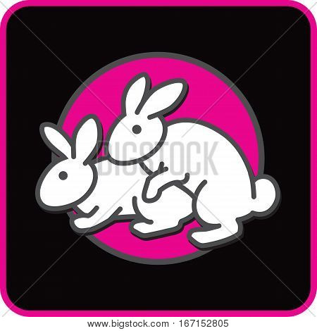 Funny cartoon card with couple of white lovers rabbits having sex on black and pink background. Rabbits breeding vector illustration.