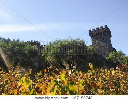 Old castle up the hill in vineyard, California Napa-Sonoma.