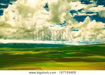 geen grass field and sky landscape background