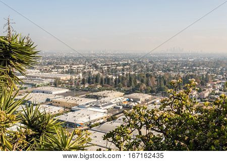Los Angeles Cityscape W8A0368