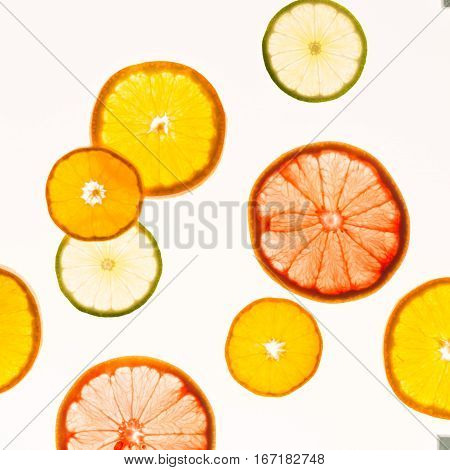 Citrus Fruits. Variety Concept. Healthy Food. Abstract Art