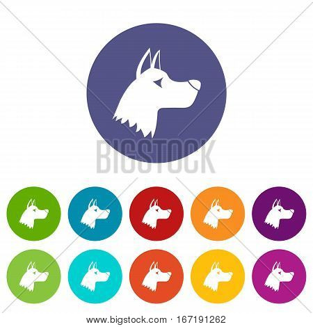 Doberman dog set icons in different colors isolated on white background