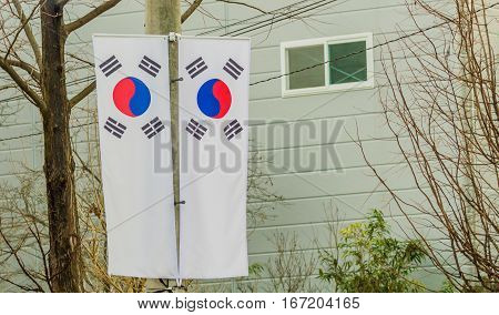 Two Korean flags hanging on a telephone pole in front of a house