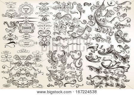 Huge mega collection of vector decorative flourishes for design