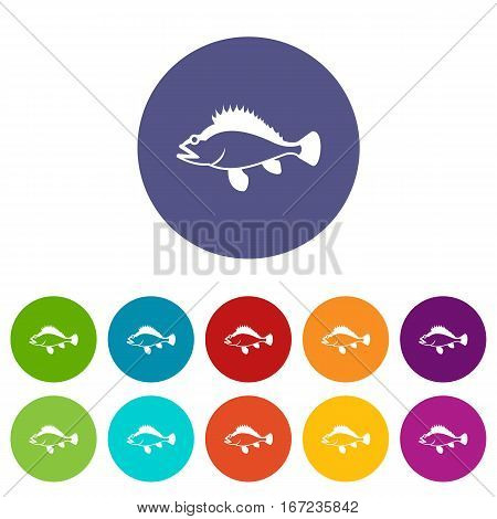 Rose fish, Sebastes norvegicus set icons in different colors isolated on white background