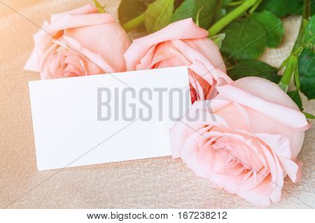 8 March postcard. Roses of peach color and white blank card for 8 March message. 8 March is international women day
