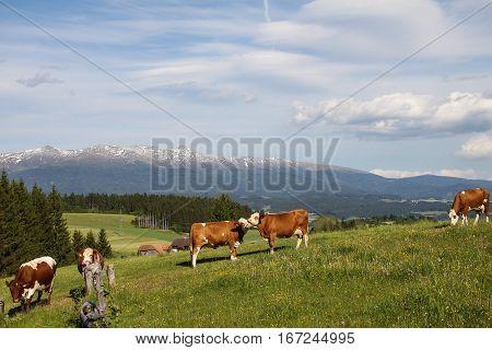 view onto the mountains of the Seetaler Alpen