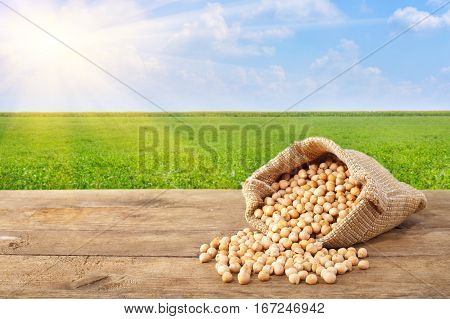 chickpea in sack. Chickpeas grains scattered out of the bag on table with field on the background. Agriculture and harvest concept. Photo with copy space area for a text. Green field, blue sky, sun