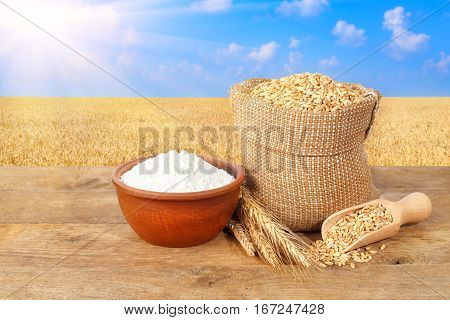 wheat grains in sack. Ears of wheat and grains in bag and flour in bowl on table with field on the background. Agriculture and harvest concept. Ripe wheat field, blue sky, sun