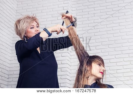 Women's haircut. Hairdresser, beauty salon. Professional hairdresser making stylish haircut. Hairdresser cutting woman hair. Process of hair cutting with use open-blade