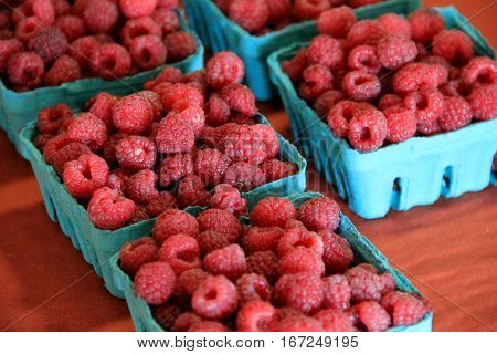 Blue containers filled with fresh picked raspberries on wood  table at local farmers market.