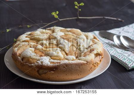 apple charlotte cake on the white plate