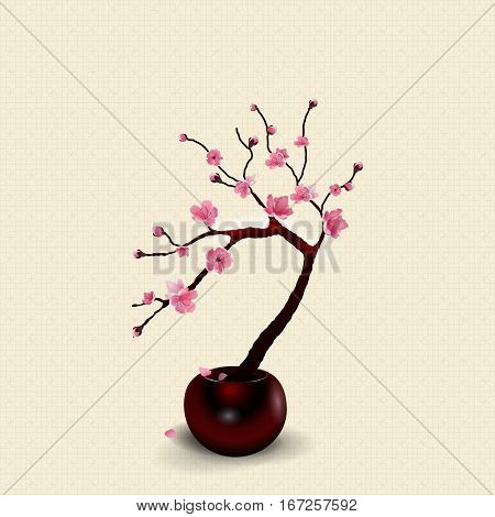 Ikebana. Composition. Figure Sakura flower. Against the background of stylized rice paper with shadow. vector illustration