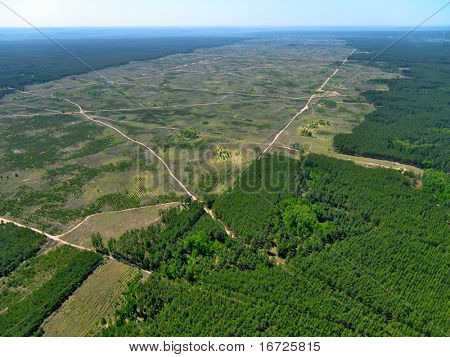 Forest cutting from above.