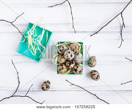 Easter Background, Quail Eggs In A Bright Box Decorated With Tree Branches. Flat Lay, Top View, View